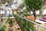 Офисы зеленые – Как зеленый офис увеличивает вашу продуктивность / Зеленый офис, эк…